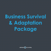 Business Survival & Adaptation Package
